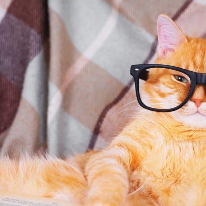9 anzeichen für schlechtes sehen optiker steiermark